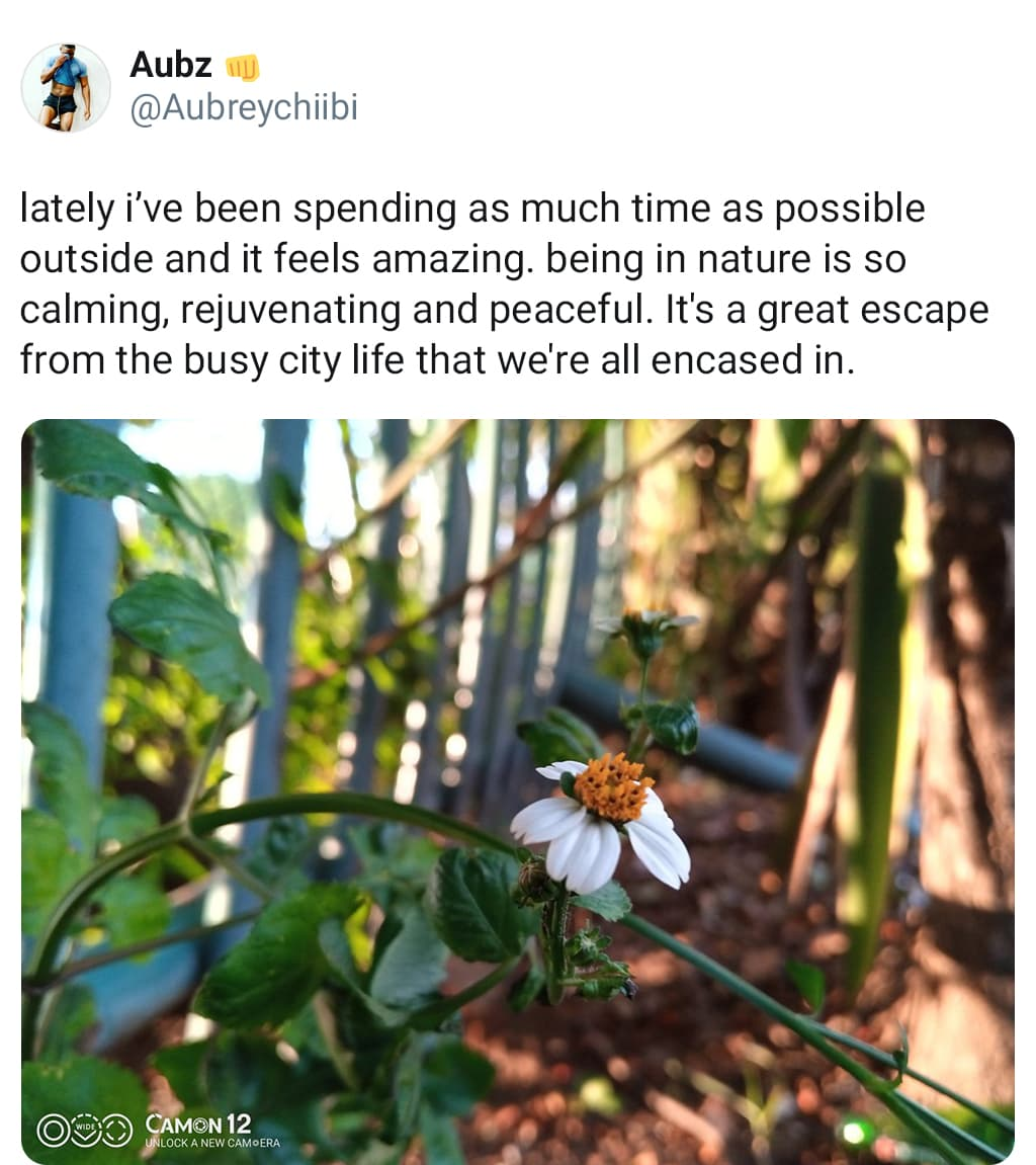 Social Media Post Describing Escaping The Busy City Life By Going Outside And Enjoying Nature