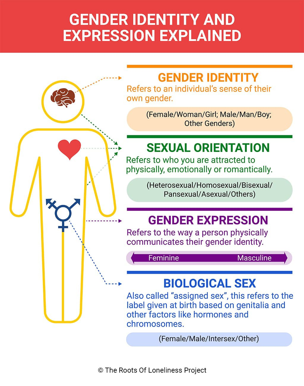 Infographic Explaining Gender Identity and Expression
