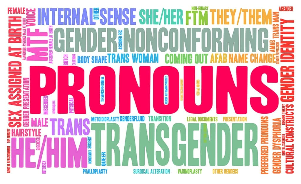 Graphic With The Word PRONOUNS Surrounded By Other Gender Identity-Related Terms Displayed In Different Colors and In Different Directions