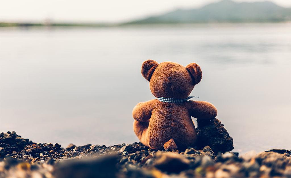 Teddy Bear Sitting On Shoreline Rocks Overlooking A Body Of Water