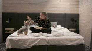 Photograph Of Happy Young Woman Sitting On Bed Feeding Small Dog With Fork